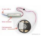 Светодиодная лента 3528/300 IP33